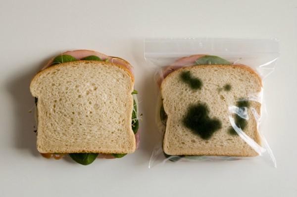 packaging-detecta-comida-pocha